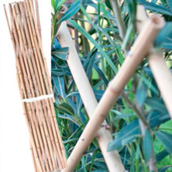 Celosia de bambu extensible 120 x 2.40 m.