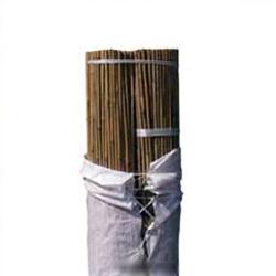 Tutor de bambu Bala 50 unidades 3 m. diametro 22-24 mm.