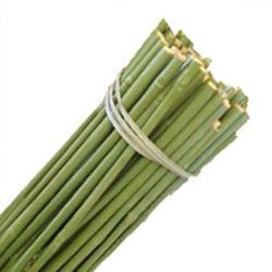 Tutor de bambu plastificado verde Bala 100 unidades 90cm. diametro 8-10 mm.