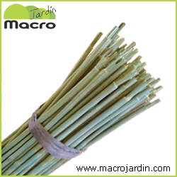 Tutor de bambu plastificado verde Bala 100 unidades 210 cm. diametro 16-18 mm.