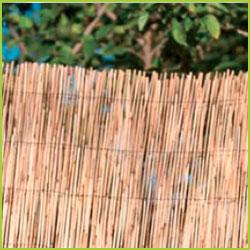 Cañizo de bambu natural entero 1 X 5 m. Nacional