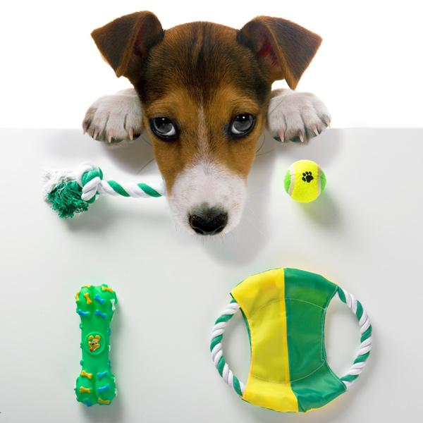 Macrojard n venta online de cercados simple torsion - Cercados para perros ...
