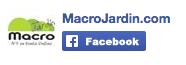 Pagina de red social Facebook